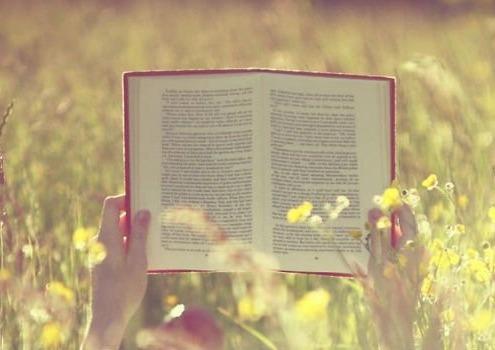 novelas para aprender ingles
